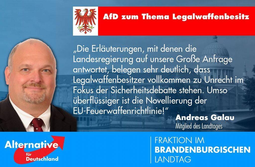 galau-afd-brandenburg