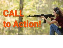 firearms_unied_-_call_to_action_2_eng