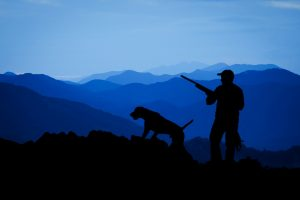 Jagd bei Nacht